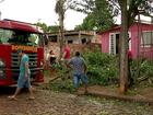 Tempestade destelha casas, derruba postes e deixa feridos no oeste do PR