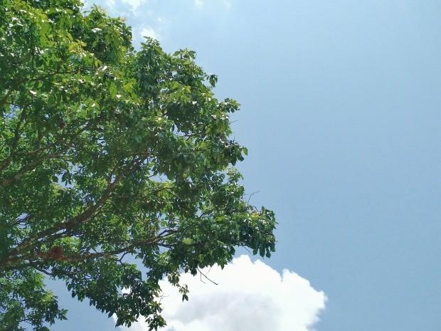 Céu de Campo Grande na tarde deste domingo (25) (Foto: Adriel Mattos/G1 MS)