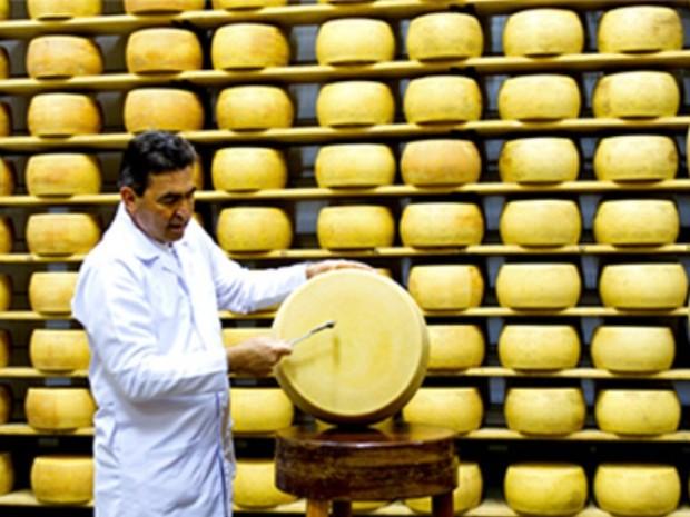 Gran Mestri busca conquistar espaço dos queijos importados no Brasil (Foto: Divulgação/Gran Mestri)