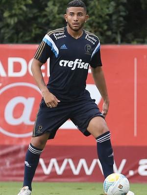 Mateus Muller Palmeiras (Foto: Cesar Greco/Ag Palmeiras/Divulgação)