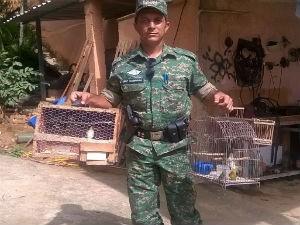 Idoso é apreendido com aves silvestres em Muriaé (Foto: Sargente Madriaga/Divulgação)