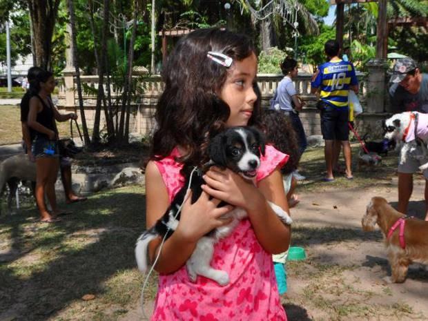 Feira de adoção da Sesma, que ocorre no próximo domingo (19), em Belém, irá disponibilizar 51 animais para doação. (Foto: Alessandra Serrão/Ascom prefeitura de Belém)