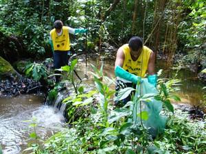 Voluntários durante um mutirão na Lagoa da Saudade, em Santos (Foto: Divulgação/Instituto Ecofaxina)