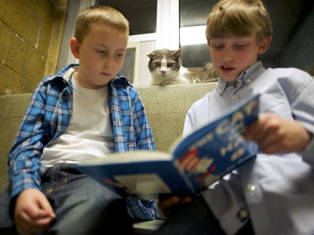 Gato observa dois meninos lendo um livro infantil (Foto: Mark Makela/Reuters)