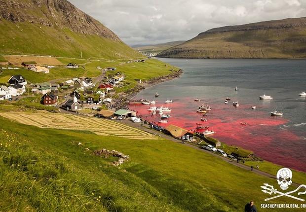 Vista do alto da colina sobre as praias onde 250 baleias piloto foram mortas nas Ilhas Faroe, arquipélago pertencente à Dinamarca (Foto: Reprodução/Sea Shepherd Global Facebook)