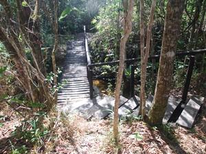 Pontes de madeira foram construídas para facilitar a chegada até a Cachoeira do Crioulo. (Foto: Pedro Costa)