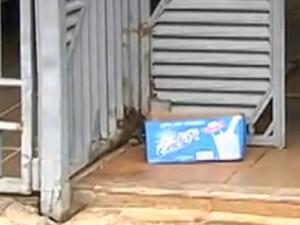 Bebê é encontrado dentro de caixa de leite, em Goiânia (Foto: Reprodução/ TV Anhanguera)