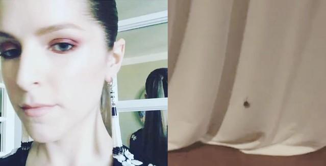 Anna Kendrick e a barata (Foto: Reprodução/instagram )
