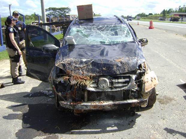 PRF apreendeU 3.600 frascos de lança-perfume após acidente em Registro, SP (Foto: Divulgação/Polícia Rodoviária Federal)