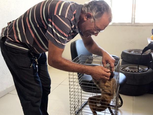 Milton Pereira afirmou que criava animal há pelo menos 20 anos dentro de casa, em João Pessoa (Foto: Walter Paparazzo/G1)