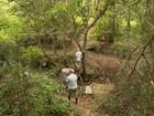 Saúde faz varredura em bairros após macaco encontrado em Varginha, MG