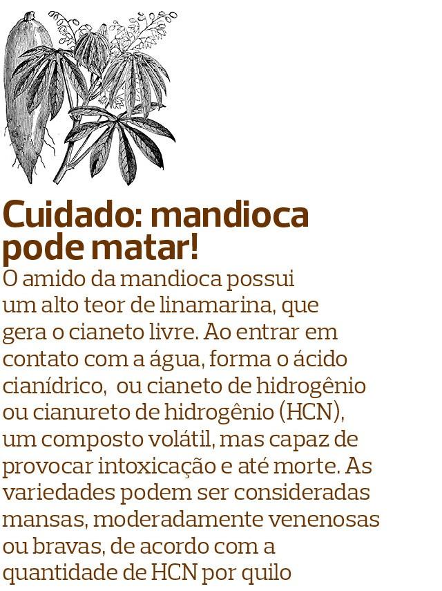 Mandioca (Foto:  )