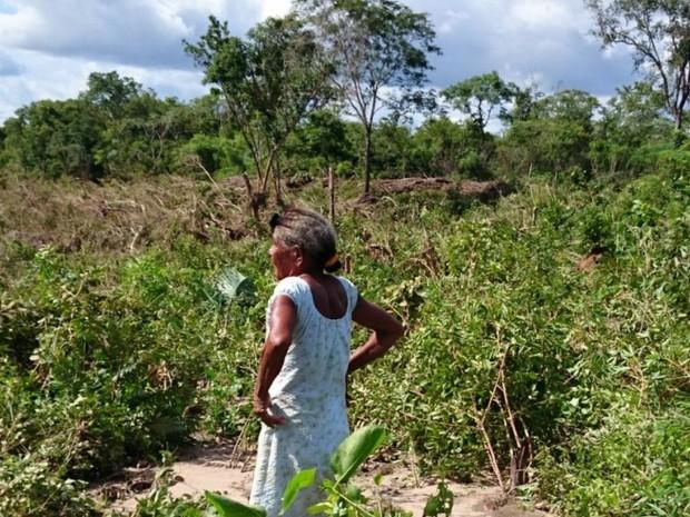 Mulher kalunga observa os estragos de alagamento em plantação, em Cavalcante, Goiás (Foto: Divulgação/ Defesa Civil)