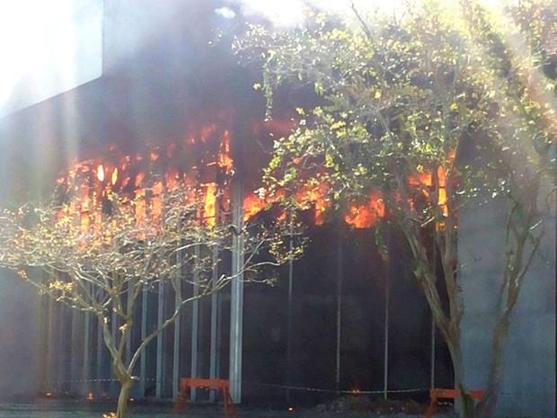 Incêndio começou no início da tarde deste domingo (7) (Foto: Daniel Cipriano/Divulgação)