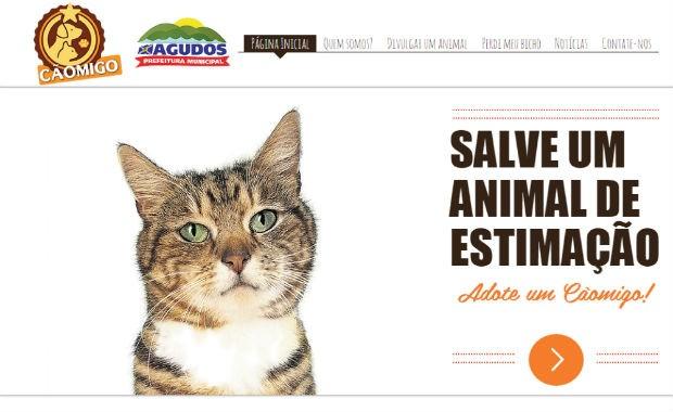Site irá catalogar informações e fotos de animais perdidos e para adoção (Foto: Reprodução)