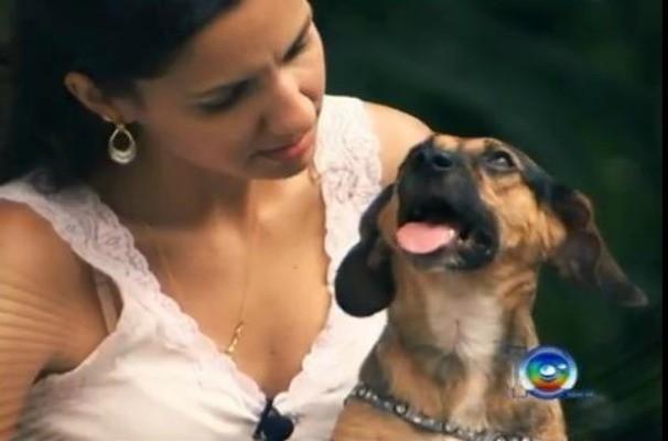 Reportagem da TV TEM despertou a reflexão sobre o combate a violência contra os animais (Foto: Reprodução / TV TEM)