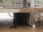 Rastro do furacão Patricia leva fortes chuvas e enchentes aos EUA