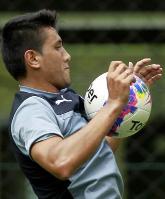 Gervasio Nuñez Botafogo (Foto: Vitor Silva / SSPress / Botafogo)