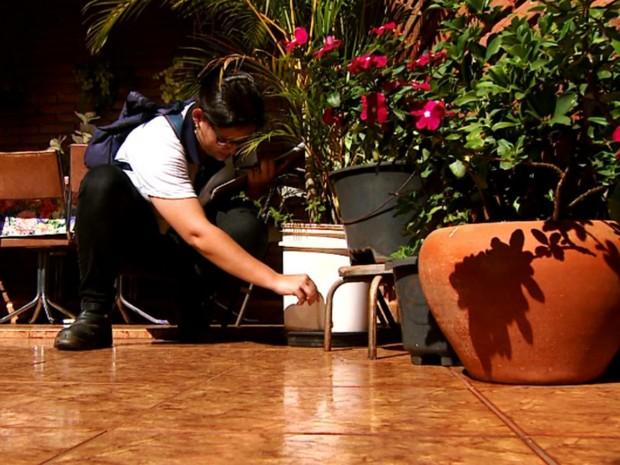 Agente de controle a endemias confere umidade em pratos durante 2º Mutirão de Combate ao Aedes aegypti (Foto: Cláudio Oliveira/EPTV)