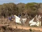 Restinga é desmatada em terrenos ocupados no Norte do ES