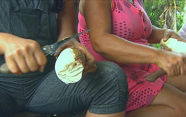 Raspadeiras tiram a casca da mandioca (Foto: Bom Dia Amazônia)