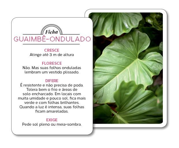 guaimbe-ficha (Foto: Gui Morelli/Editora Globo)