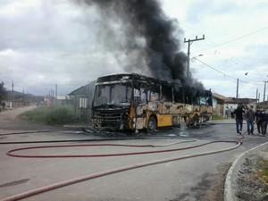 Ônibus foi destruído pelas chamas em Joinville (Foto: Sara Kirchhof/RBS TV)