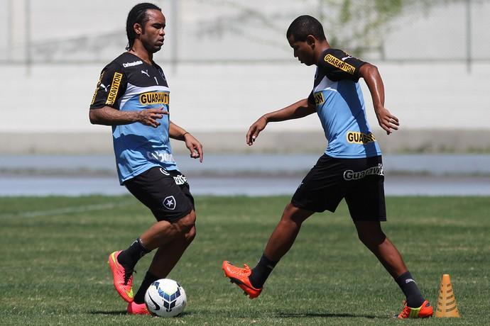 carlos alberto fabiano botafogo (Foto: Vitor Silva/SS Press)