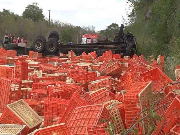 A rodovia federal BR-230 permaneceu interditada por mais de uma hora no sentido Campina Grande-João Pessoa, na tarde desta quinta-feira (14) no Agreste paraibano, quando uma carreta transportando frangos tombou próximo ao município de Riachão do Bacamarte. Segundo a Polícia Rodoviária Federal (PRF), o motorista do veículo informou que perdeu o controle ao ser trancado por outro caminhão, que fugiu do local. A PRF levou mais de uma hora para controlar o tráfego e fazer a liberação da pista. O motorista foi encaminhado para o Hospital de Emergência e Trauma de Campina Grande, onde encontra-se em estado regular. (Foto: Reprodução/TV Paraíba)
