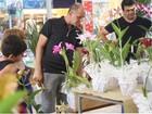 Festival de orquídeas é atração nesta quinta em shopping de Campinas, SP
