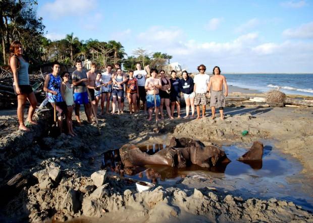 Os estudantes durante a primeira etapa da escavação, em 25 de agosto de 2012 (Foto: Divulgação/Unesp)