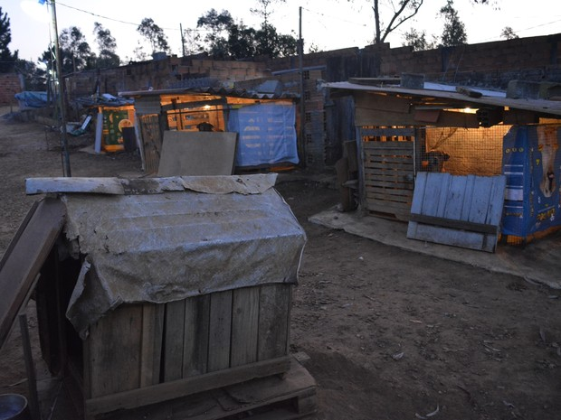"""Alguns cachorros possuem """"casas separadas"""" em """"vilarejo"""" mantido por idoso em Mogi das Cruzes (Foto: Jamile Santana/G1)"""