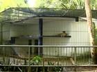 Obras no Parque Zoobotânico estão 70% concluídas, aponta direção