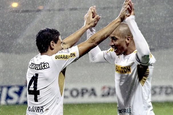 De vice-lanterna, o Botafogo pulou para o nono lugar, depois da vitória por 6 a 0 em cima do Criciúma (Foto: globoesporte.com)