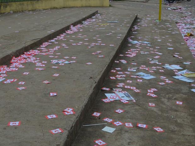 Partidos dever ser punidos por lixo eleitoral (Foto: Aline Nascimento/G1)