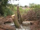 Vazamento de esgoto atinge rio em Ourinhos e causa mau cheiro