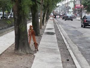 Avenida Siqueira Campos, em Santos (Foto: Isabela Carrari / Prefeitura de Santos)