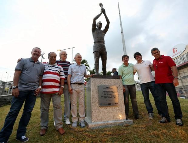 Estátua de Pelé, Arena Fonte Nova (Foto: Vaner Casaes/Ag. BAPRESS)