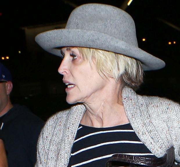 Sharon Stone (Foto: X17 / Agência)