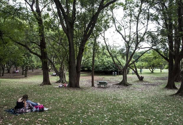 Parque do Ibirapuera (Foto: (Foto: Vagner Campos/TV Globo))