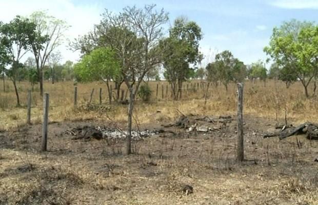 Bactéria tóxica pode ter causado morte de 26 cabeças de gado, em Jaraguá,  GOiás, 2 (Foto: Reprodução/TV Anhanguera)