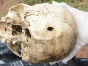 Crânio foi encontrado com marcas de tiro (Foto: Dennis Tavares/SSP/Divulgação)