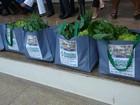 Lonas e cartazes usados na Expofeira são reciclados e viram sacolas, no AP