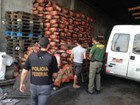 PF e Ibama deflagram operação para proteger matas nativas no sul do PR