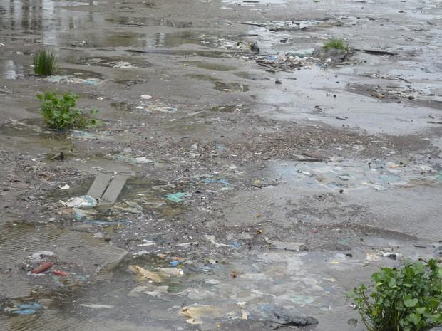 Poluição pode causar prejuízos ambientais a espécies de peixes no rio (Foto: Abinoan Santiago/G1)
