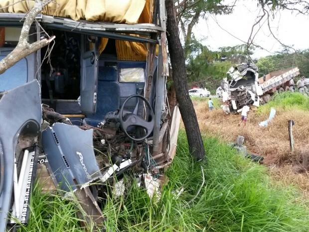 Ônibus e caminhão colidiram na GO-156 em Palmeiras de Goiás (Foto: Leonardo Gonçalves/TV Anhanguera)