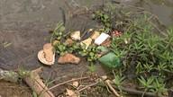 Vários pontos do Lago Paranoá estão com muito lixo