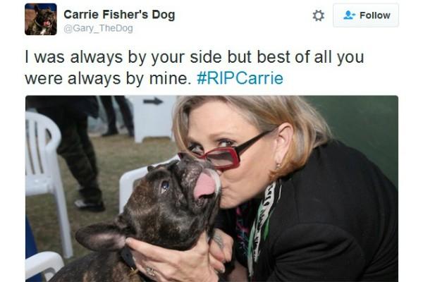Gary se despede de Carrie Fisher (Foto: Reprodução Twitter)