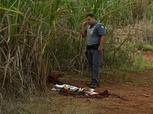Ossos foram encontrados em canavial às margens da Rodovia Mario Donegá (Foto: Fábio Junior/EPTV)