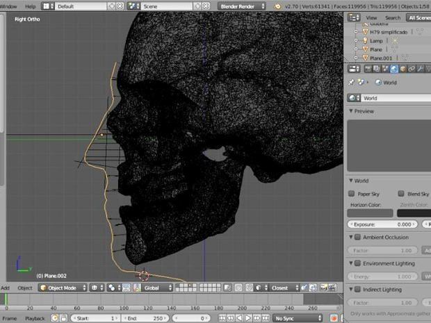 Programa de computador traça a modelagem do rosto a partir do crânio (Foto: Reprodução / Blender)